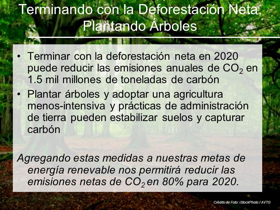 Terminando con la Deforestación Neta, Plantando Árboles Terminar con la deforestación neta en 2020 puede reducir las emisiones anuales de CO 2 en 1.5