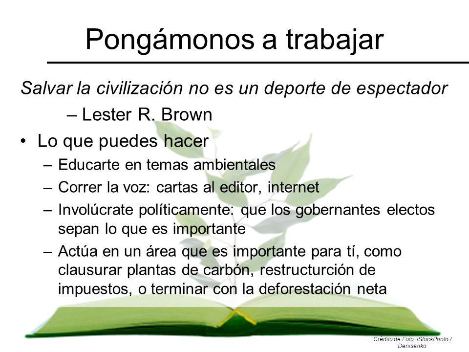 Pongámonos a trabajar Salvar la civilización no es un deporte de espectador – Lester R. Brown Lo que puedes hacer –Educarte en temas ambientales –Corr