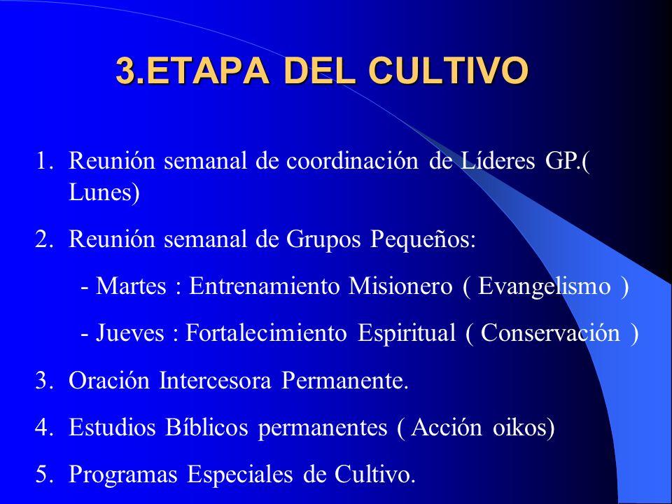2.ETAPA DE LA SIEMBRA 1.Organización de Grupos Pequeños.
