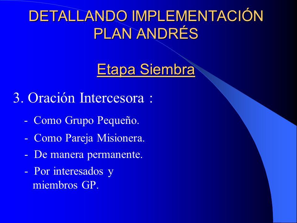 DETALLANDO IMPLEMENTACIÓN DEL PLAN ANDRÉS Etapa Siembra 2.