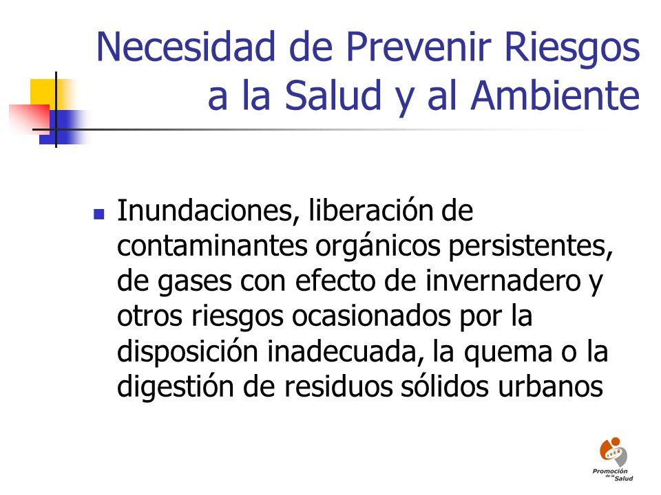 Necesidad de Prevenir Riesgos a la Salud y al Ambiente Inundaciones, liberación de contaminantes orgánicos persistentes, de gases con efecto de invern