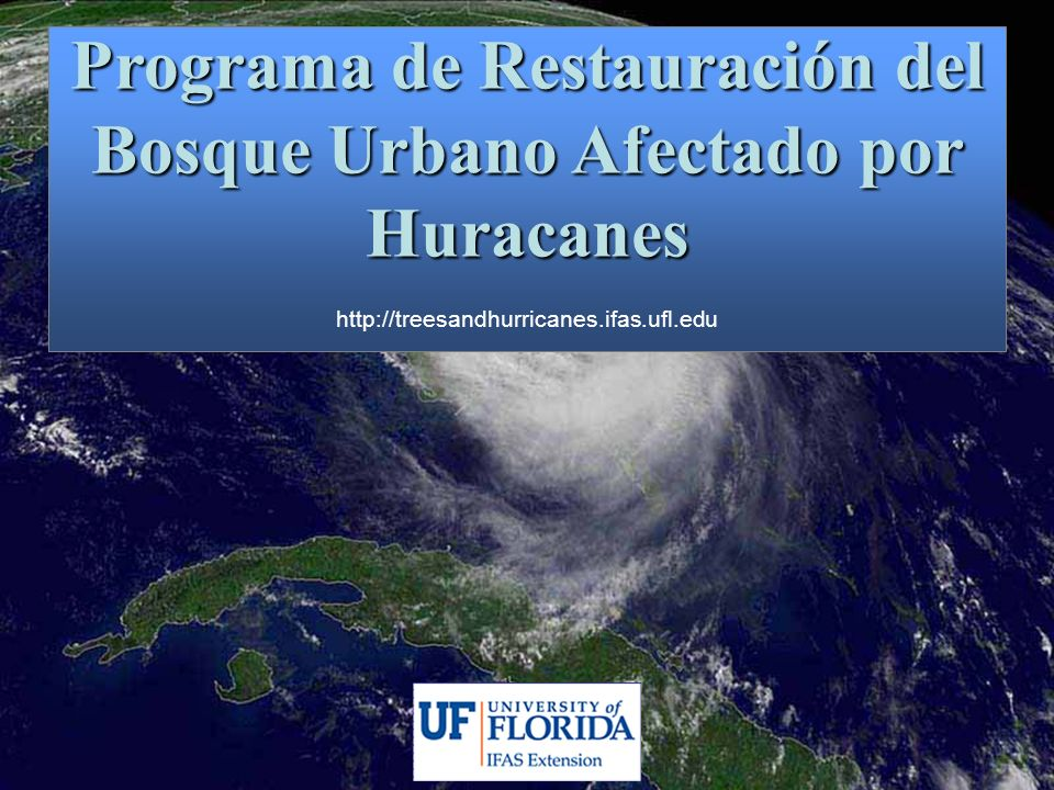 Programa de Restauración del Bosque Urbano Afectado por Huracanes http://treesandhurricanes.ifas.ufl.edu