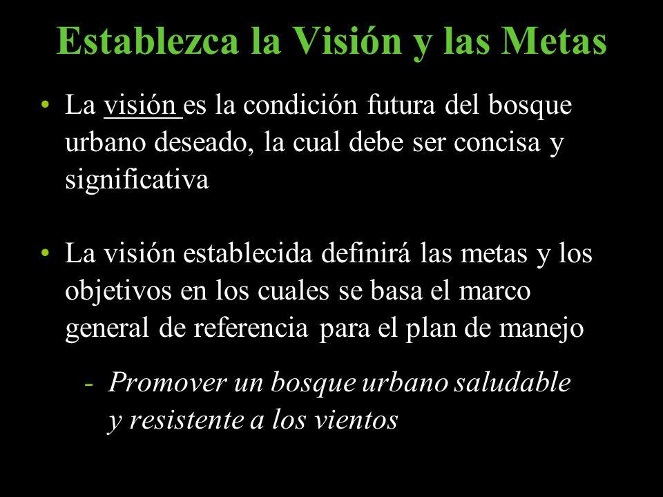 Establezca la Visión y las Metas La visión es la condición futura del bosque urbano deseado, la cual debe ser concisa y significativa La visión establ