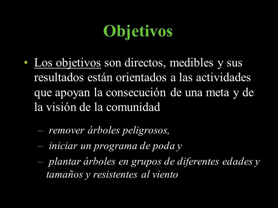 Objetivos Los objetivos son directos, medibles y sus resultados están orientados a las actividades que apoyan la consecución de una meta y de la visió