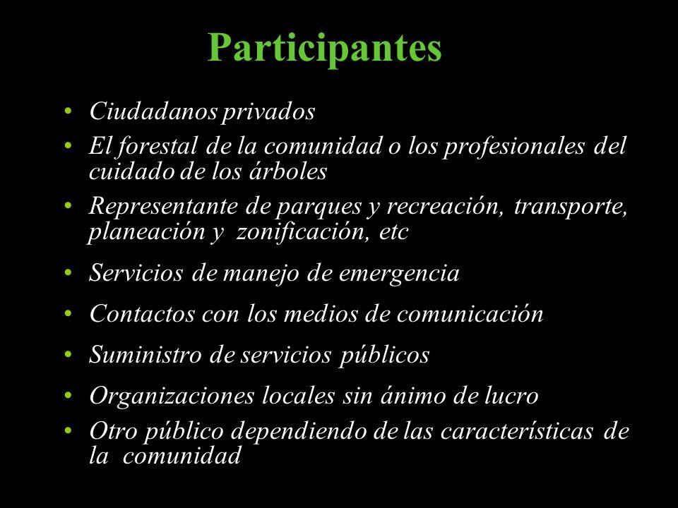 Participantes Ciudadanos privados El forestal de la comunidad o los profesionales del cuidado de los árboles Representante de parques y recreación, tr