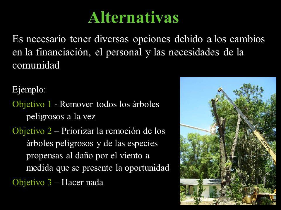 Alternativas Ejemplo: Objetivo 1 - Remover todos los árboles peligrosos a la vez Objetivo 2 – Priorizar la remoción de los àrboles peligrosos y de las
