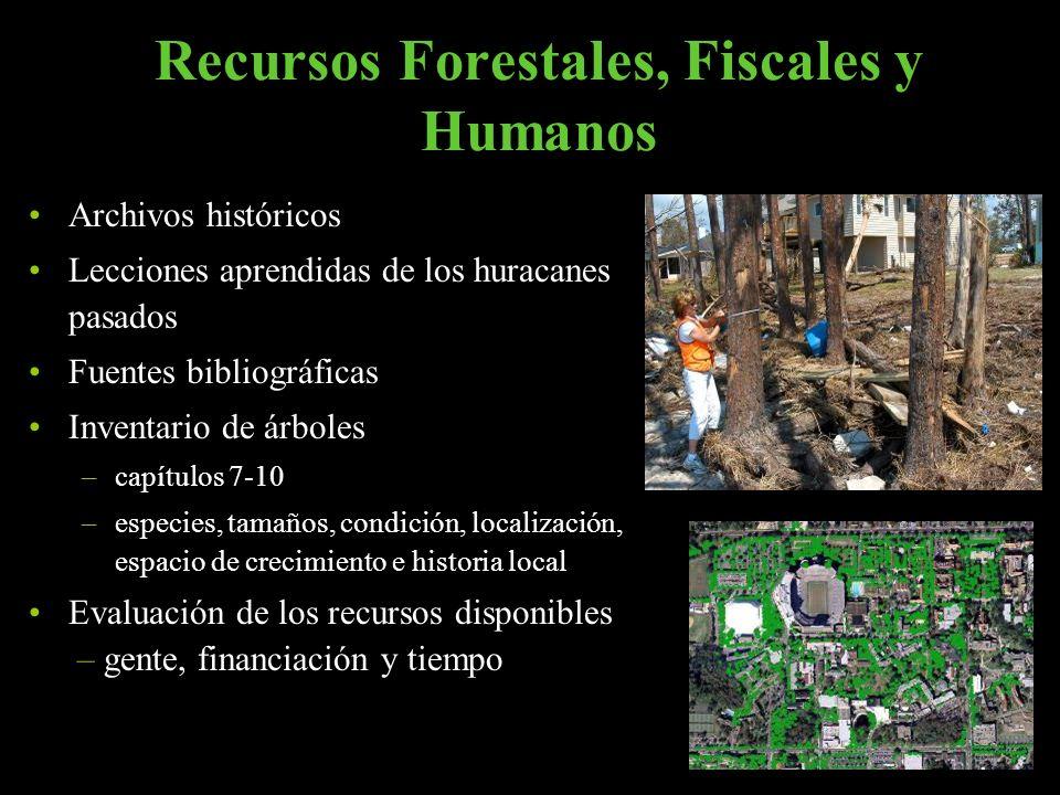 Recursos Forestales, Fiscales y Humanos Archivos históricos Lecciones aprendidas de los huracanes pasados Fuentes bibliográficas Inventario de árboles