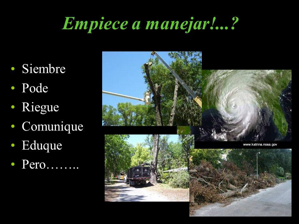 www.katrina.noaa.gov Siembre Pode Riegue Comunique Eduque Pero…….. Empiece a manejar!...?