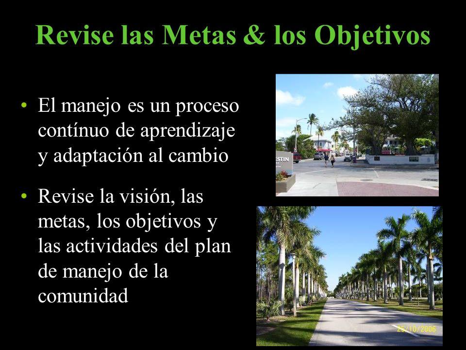 Revise las Metas & los Objetivos El manejo es un proceso contínuo de aprendizaje y adaptación al cambio Revise la visión, las metas, los objetivos y l