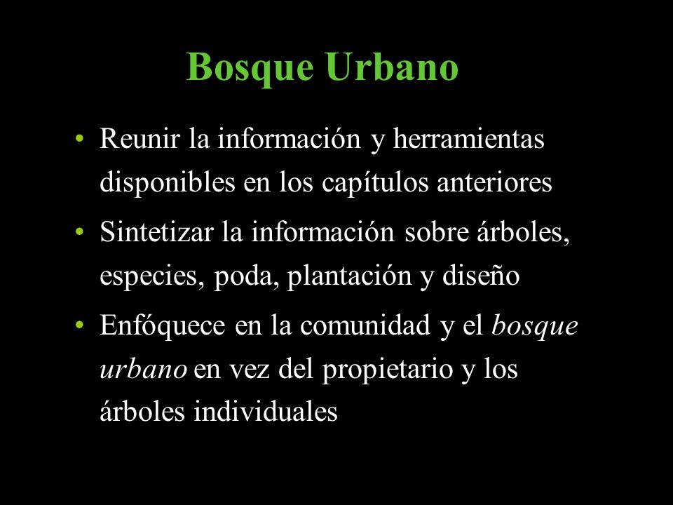 Bosque Urbano Reunir la información y herramientas disponibles en los capítulos anteriores Sintetizar la información sobre árboles, especies, poda, pl