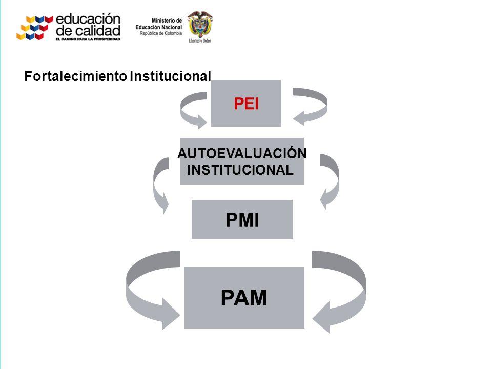 PEI AUTOEVALUACIÓN INSTITUCIONAL PMI PAM Fortalecimiento Institucional
