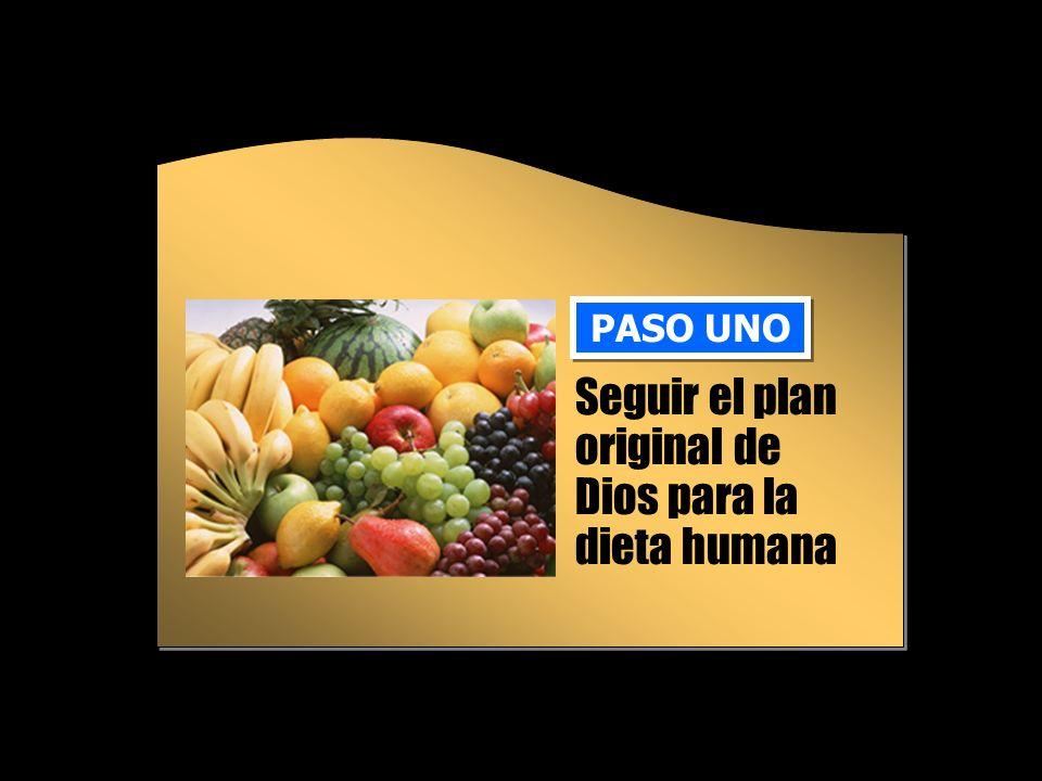 La dieta original Una dieta vegetariana es más saludable que una dieta basada en carnes llenas de grasas saturadas.
