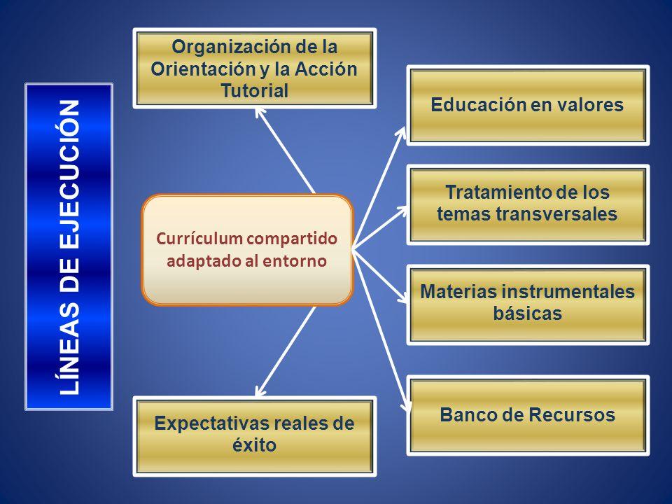 Currículum compartido adaptado al entorno LÍNEAS DE EJECUCIÓN Organización de la Orientación y la Acción Tutorial Educación en valores Tratamiento de los temas transversales Materias instrumentales básicas Banco de Recursos Expectativas reales de éxito