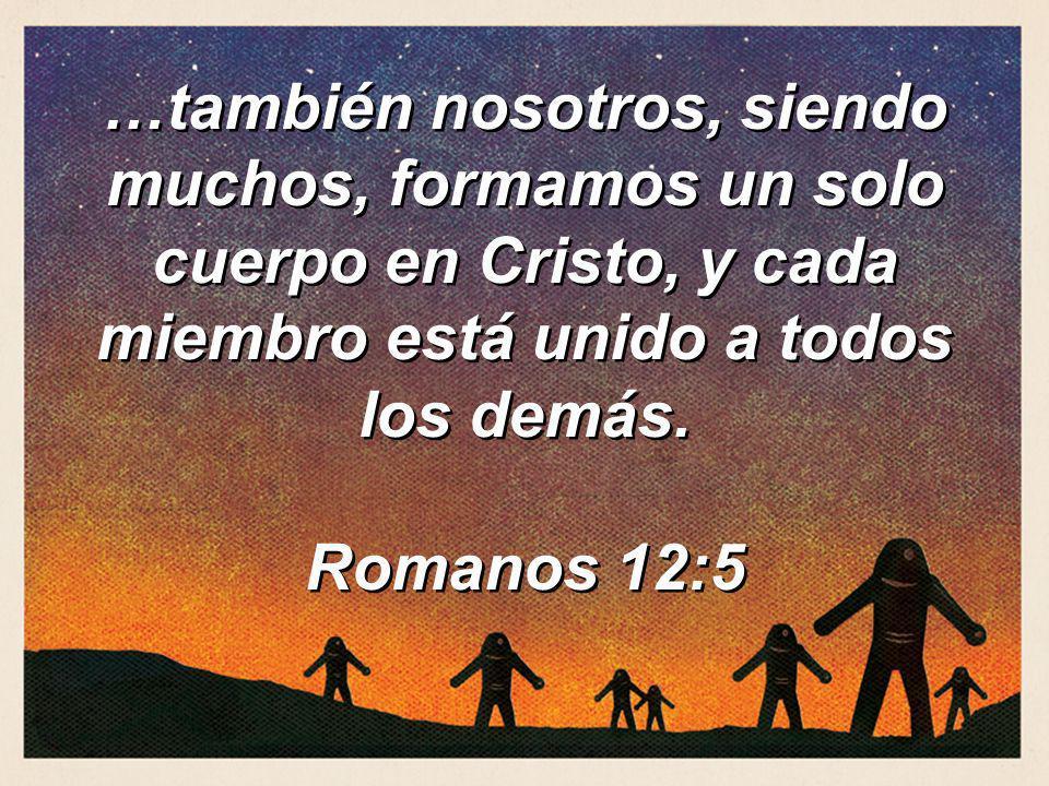 …también nosotros, siendo muchos, formamos un solo cuerpo en Cristo, y cada miembro está unido a todos los demás. Romanos 12:5