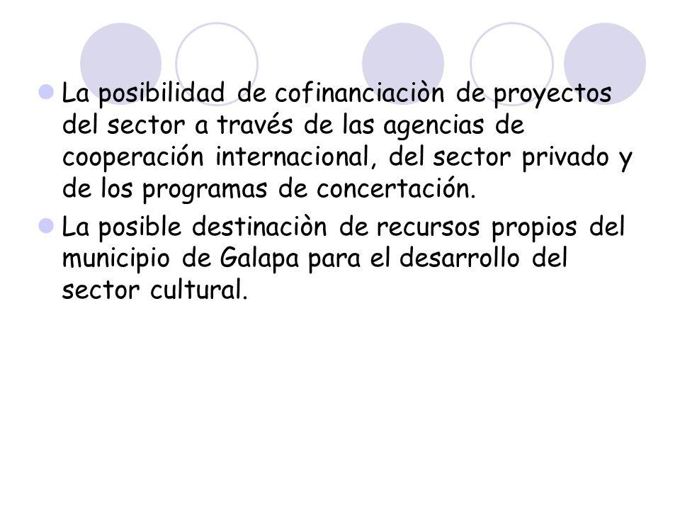 La posibilidad de cofinanciaciòn de proyectos del sector a través de las agencias de cooperación internacional, del sector privado y de los programas
