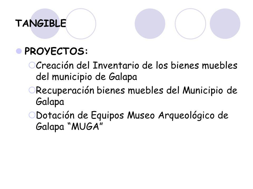 TANGIBLE PROYECTOS: Creación del Inventario de los bienes muebles del municipio de Galapa Recuperación bienes muebles del Municipio de Galapa Dotación