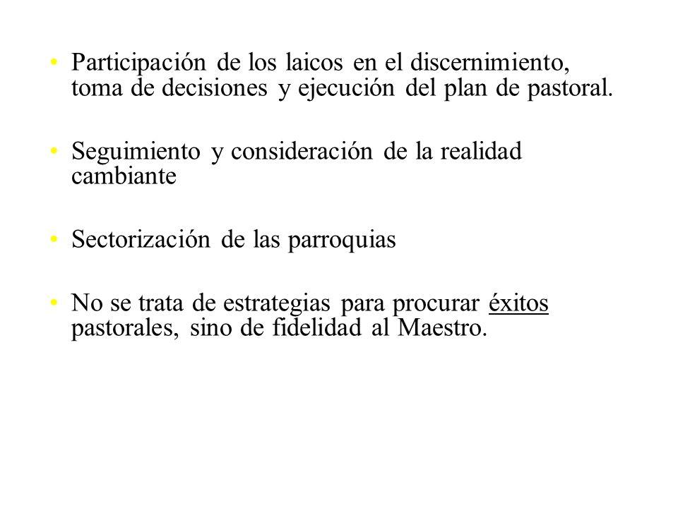 Participación de los laicos en el discernimiento, toma de decisiones y ejecución del plan de pastoral.