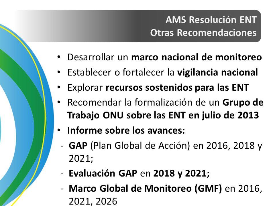 AMS Resolución ENT Otras Recomendaciones Desarrollar un marco nacional de monitoreo Establecer o fortalecer la vigilancia nacional Explorar recursos sostenidos para las ENT Recomendar la formalización de un Grupo de Trabajo ONU sobre las ENT en julio de 2013 Informe sobre los avances: -GAP (Plan Global de Acción) en 2016, 2018 y 2021; -Evaluación GAP en 2018 y 2021; -Marco Global de Monitoreo (GMF) en 2016, 2021, 2026
