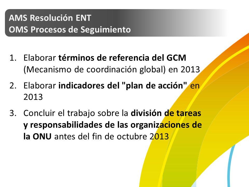 AMS Resolución ENT OMS Procesos de Seguimiento 1.Elaborar términos de referencia del GCM (Mecanismo de coordinación global) en 2013 2.Elaborar indicadores del plan de acción en 2013 3.Concluir el trabajo sobre la división de tareas y responsabilidades de las organizaciones de la ONU antes del fin de octubre 2013