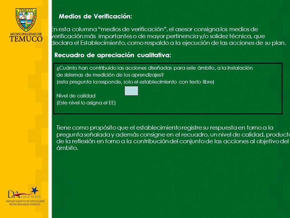 Medios de Verificación: En esta columna medios de verificación, el asesor consigna los medios de verificación más importantes o de mayor pertinencia y