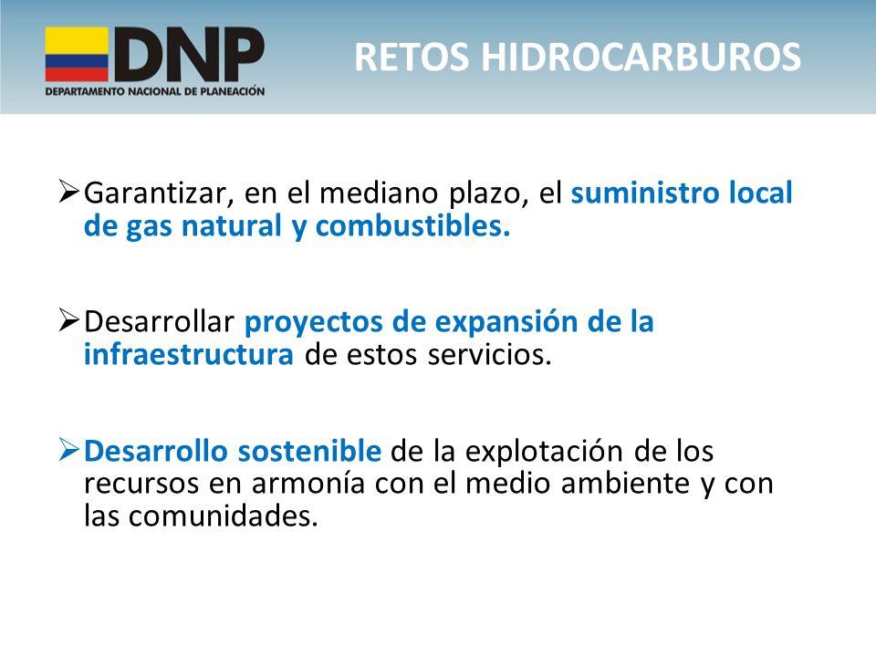 Garantizar, en el mediano plazo, el suministro local de gas natural y combustibles. Desarrollar proyectos de expansión de la infraestructura de estos