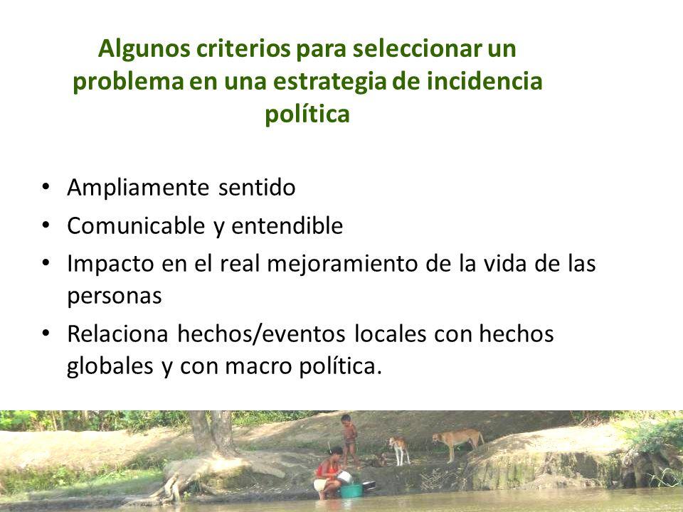 Algunos criterios para seleccionar un problema en una estrategia de incidencia política Ampliamente sentido Comunicable y entendible Impacto en el rea