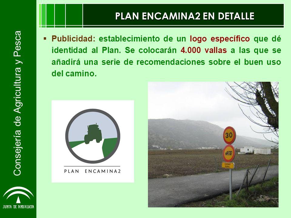 Consejería de Agricultura y Pesca PLAN ENCAMINA2 EN DETALLE Publicidad: establecimiento de un logo específico que dé identidad al Plan. Se colocarán 4
