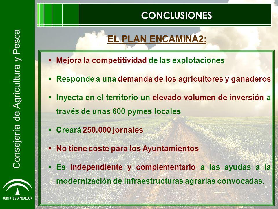 Consejería de Agricultura y Pesca CONCLUSIONES Mejora la competitividad de las explotaciones Responde a una demanda de los agricultores y ganaderos In