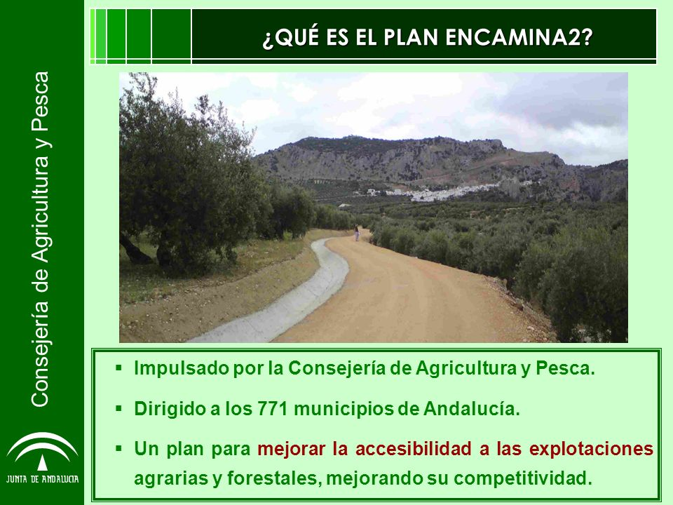 Consejería de Agricultura y Pesca ¿QUÉ ES EL PLAN ENCAMINA2? Impulsado por la Consejería de Agricultura y Pesca. Dirigido a los 771 municipios de Anda