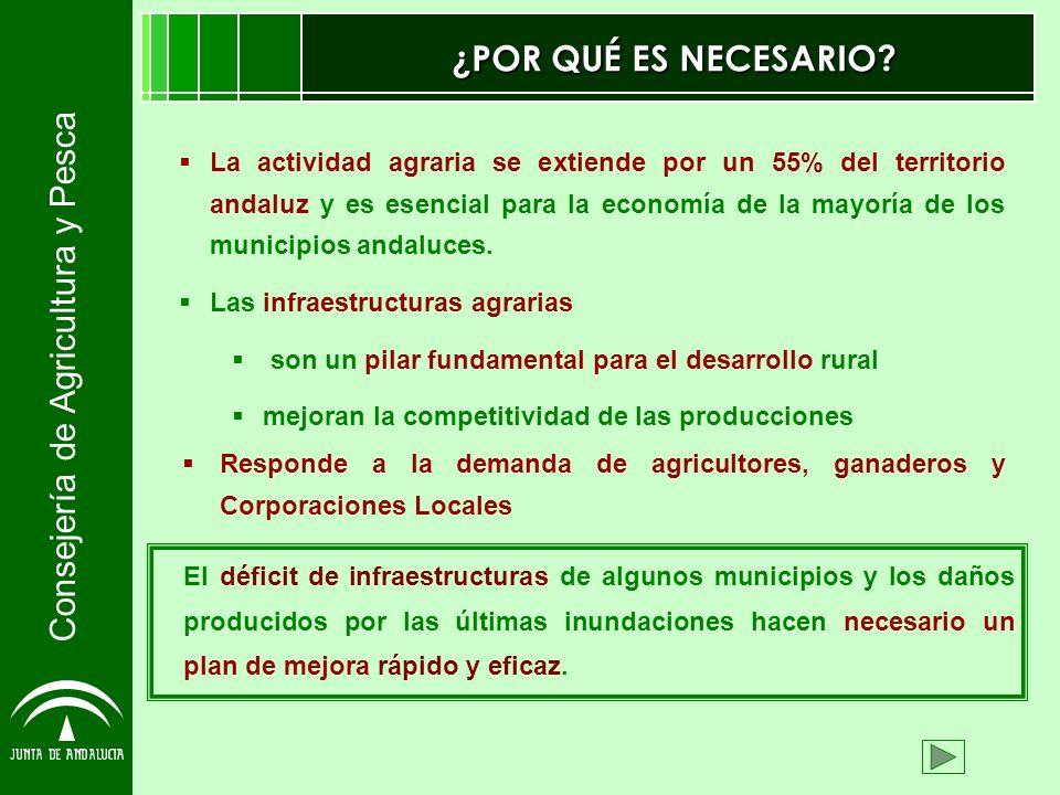 Consejería de Agricultura y Pesca ¿POR QUÉ ES NECESARIO? La actividad agraria se extiende por un 55% del territorio andaluz y es esencial para la econ