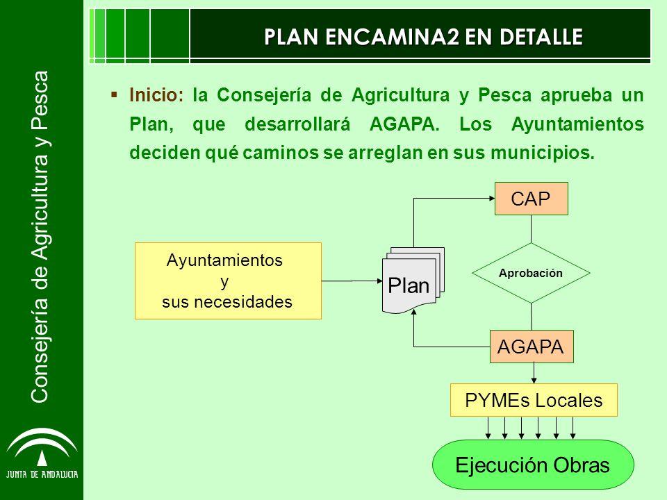 Consejería de Agricultura y Pesca PLAN ENCAMINA2 EN DETALLE Inicio: la Consejería de Agricultura y Pesca aprueba un Plan, que desarrollará AGAPA. Los