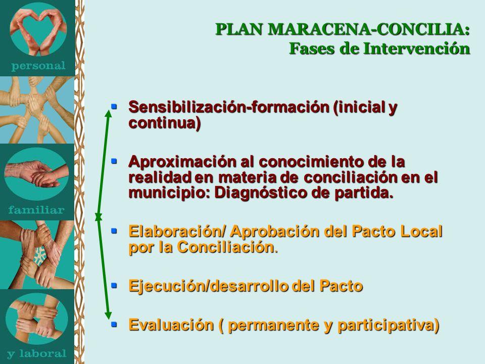 PLAN MARACENA-CONCILIA: Fases de Intervención Sensibilización-formación (inicial y continua) Sensibilización-formación (inicial y continua) Aproximaci