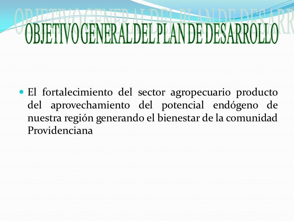 El fortalecimiento del sector agropecuario producto del aprovechamiento del potencial endógeno de nuestra región generando el bienestar de la comunidad Providenciana
