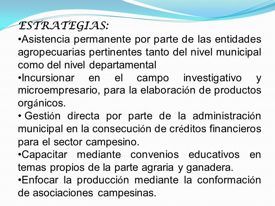 ESTRATEGIAS: Asistencia permanente por parte de las entidades agropecuarias pertinentes tanto del nivel municipal como del nivel departamental Incursi