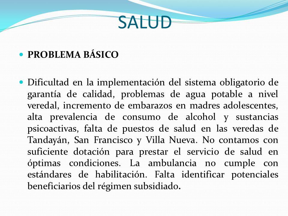 SALUD PROBLEMA BÁSICO Dificultad en la implementación del sistema obligatorio de garantía de calidad, problemas de agua potable a nivel veredal, incre
