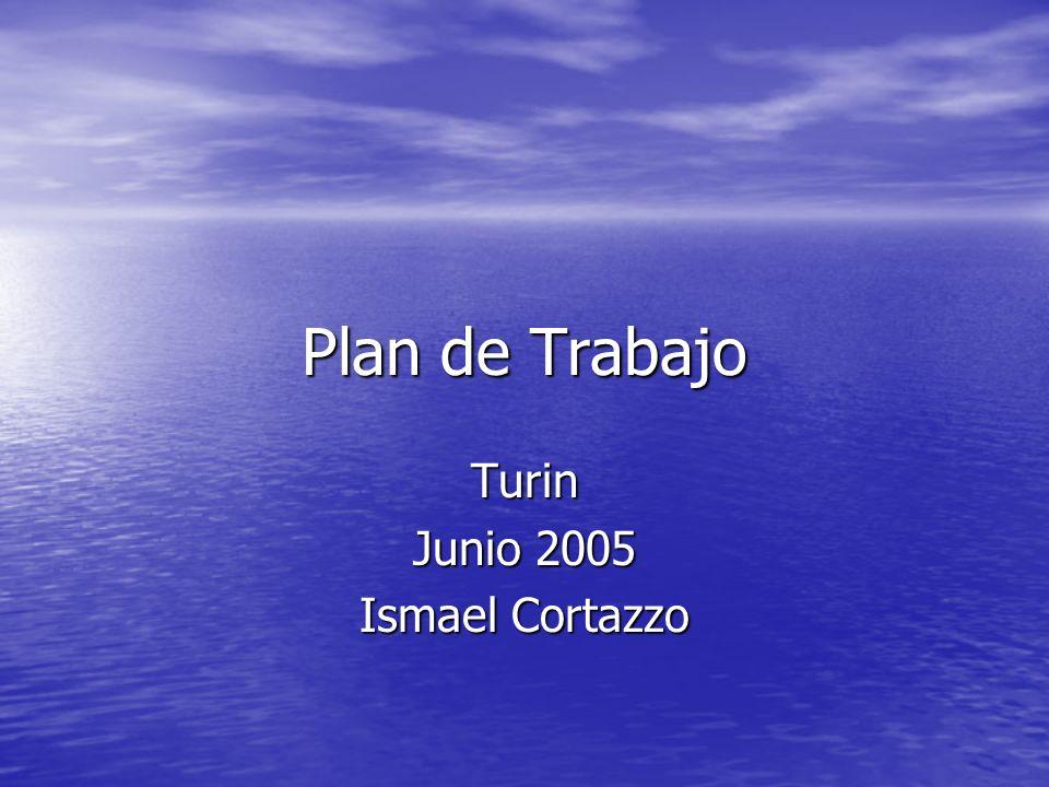 Plan de Trabajo Turin Junio 2005 Ismael Cortazzo