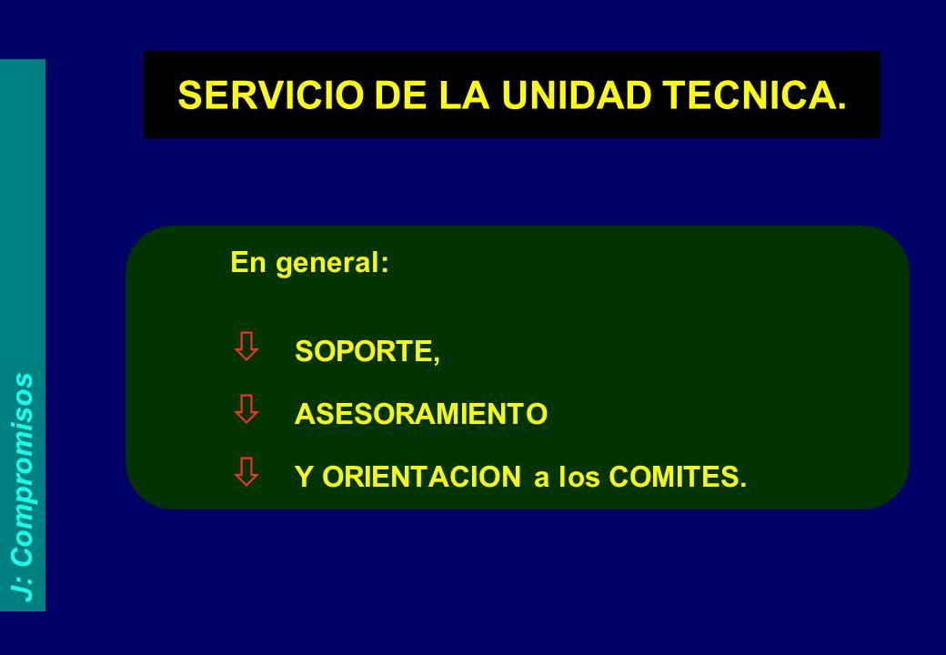 SERVICIO DE LA UNIDAD TECNICA.