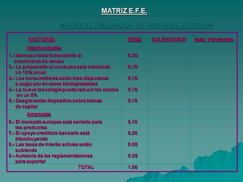 MATRIZ E.F.E.
