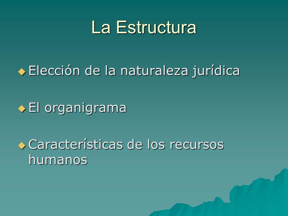 La Estructura Elección de la naturaleza jurídica Elección de la naturaleza jurídica El organigrama El organigrama Características de los recursos humanos Características de los recursos humanos