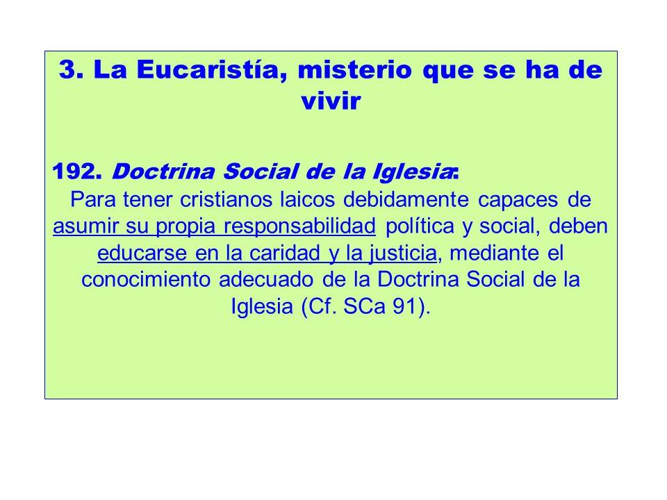 3. La Eucaristía, misterio que se ha de vivir 192. Doctrina Social de la Iglesia: Para tener cristianos laicos debidamente capaces de asumir su propia