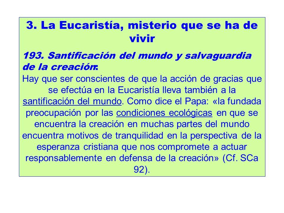 3. La Eucaristía, misterio que se ha de vivir 193. Santificación del mundo y salvaguardia de la creación: Hay que ser conscientes de que la acción de