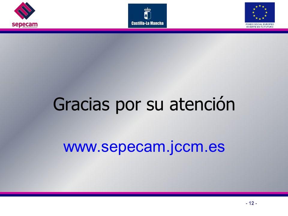 - 12 - Gracias por su atención www.sepecam.jccm.es
