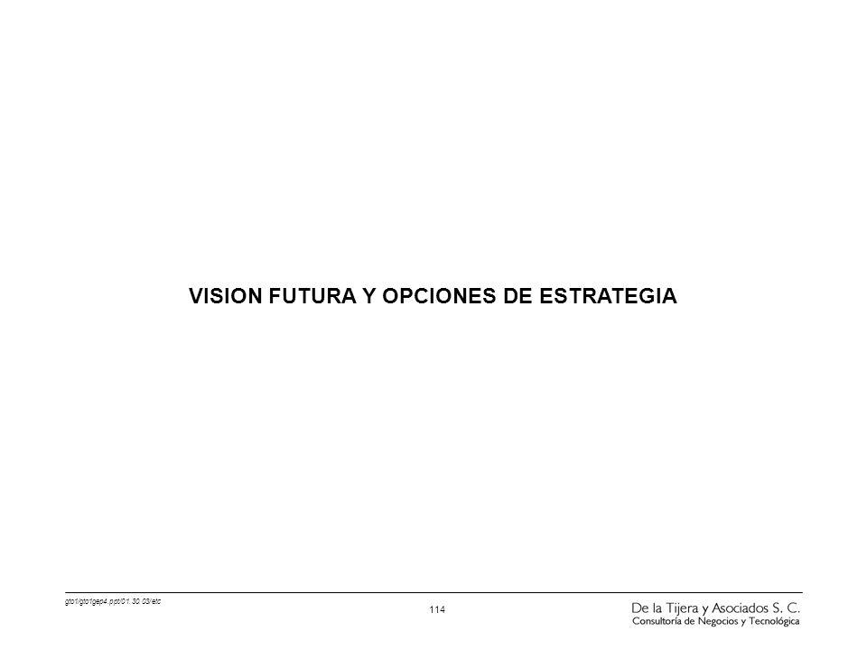 gto1/gto1gep4.ppt/01.30.03/etc 114 VISION FUTURA Y OPCIONES DE ESTRATEGIA
