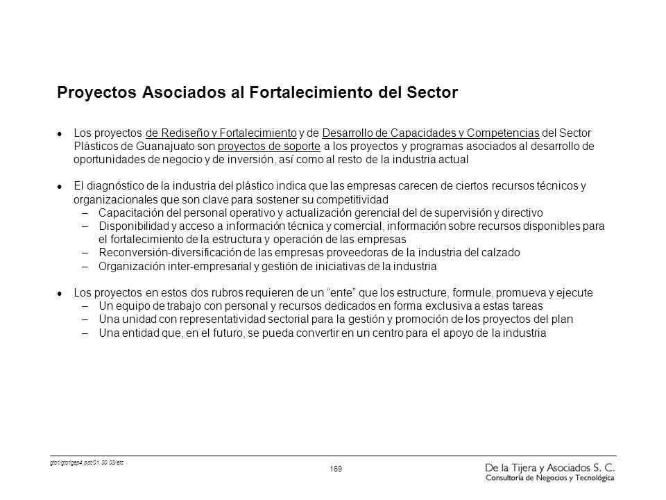 gto1/gto1gep4.ppt/01.30.03/etc 169 Proyectos Asociados al Fortalecimiento del Sector l Los proyectos de Rediseño y Fortalecimiento y de Desarrollo de