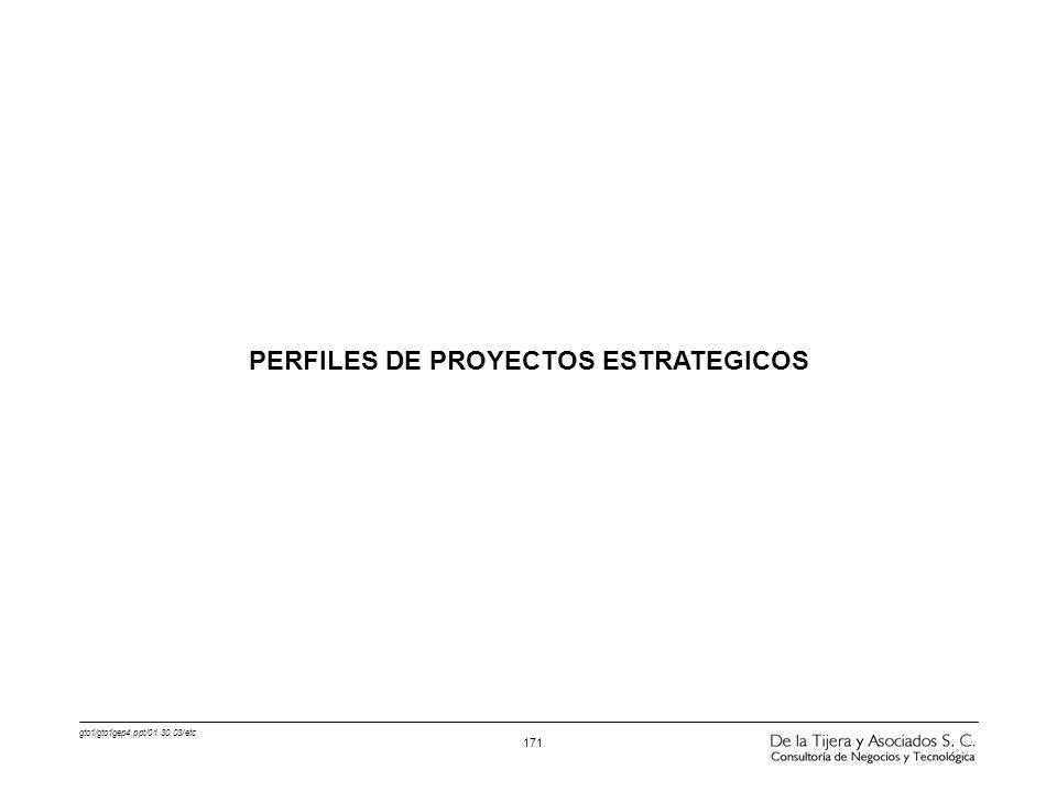 gto1/gto1gep4.ppt/01.30.03/etc 171 PERFILES DE PROYECTOS ESTRATEGICOS