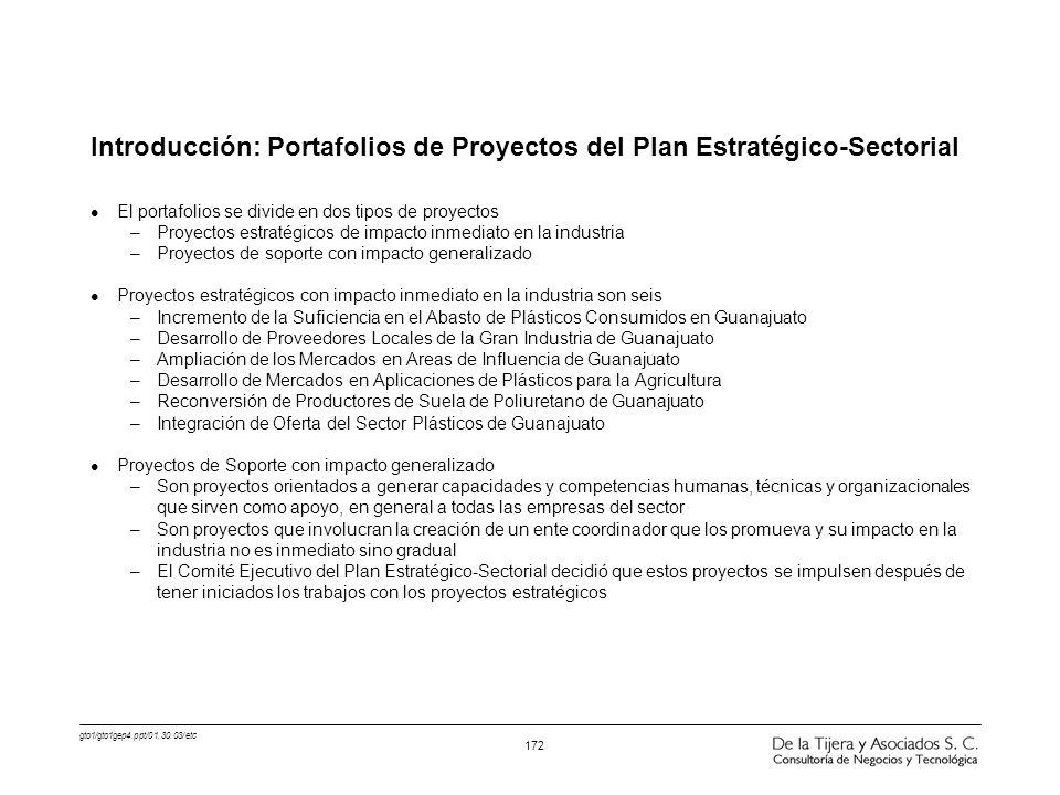 gto1/gto1gep4.ppt/01.30.03/etc 172 Introducción: Portafolios de Proyectos del Plan Estratégico-Sectorial l El portafolios se divide en dos tipos de pr