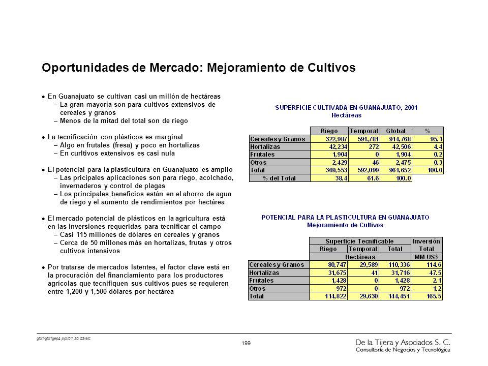 gto1/gto1gep4.ppt/01.30.03/etc 199 Oportunidades de Mercado: Mejoramiento de Cultivos l En Guanajuato se cultivan casi un millón de hectáreas –La gran
