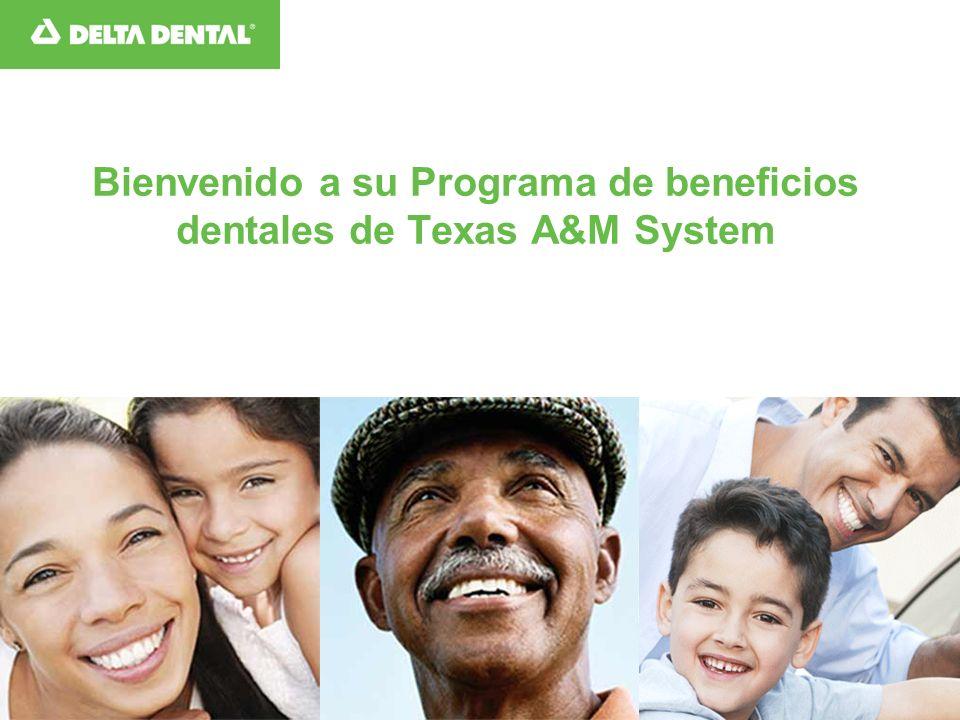 Bienvenido a su Programa de beneficios dentales de Texas A&M System