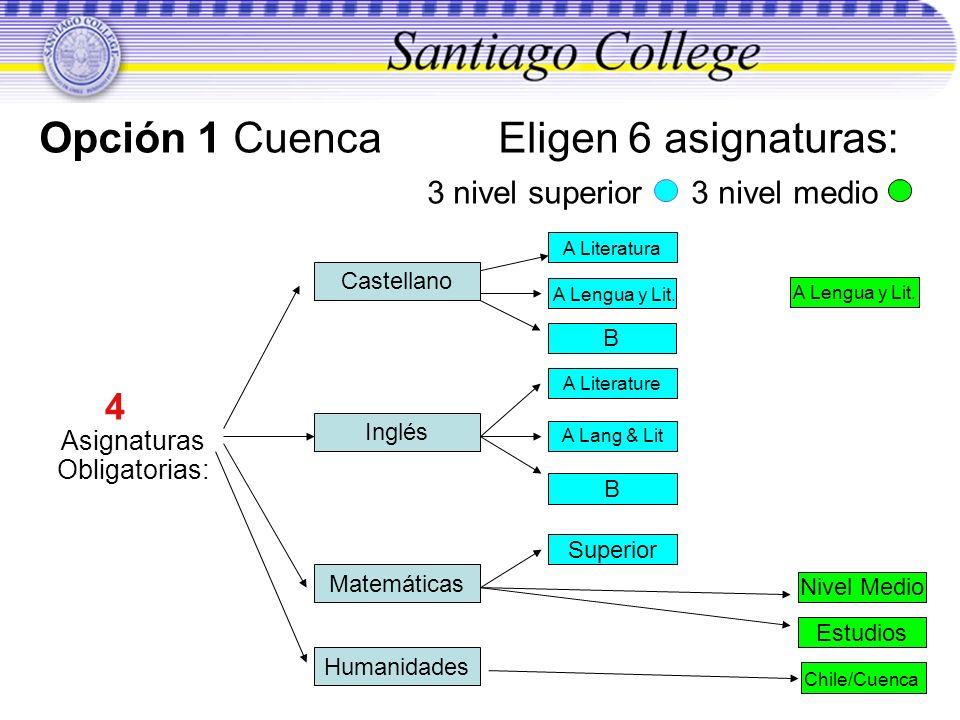 Opción 1 Cuenca Eligen 6 asignaturas: 3 nivel superior 3 nivel medio 4 Asignaturas Obligatorias: Castellano Inglés Matemáticas A Literatura B Superior