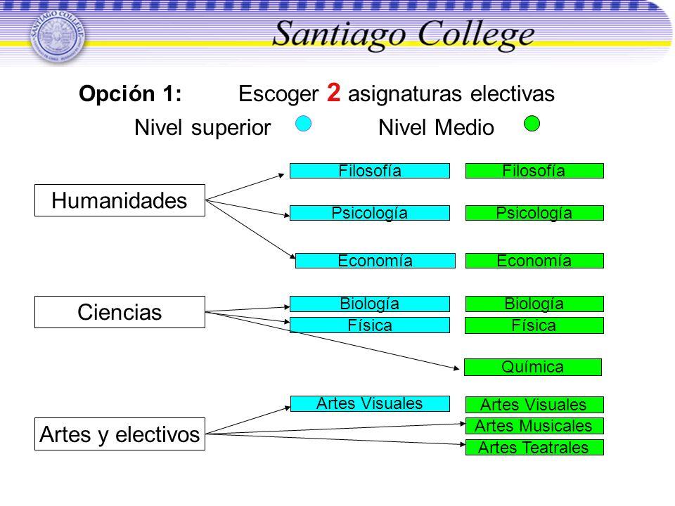 Opción 1: Escoger 2 asignaturas electivas Nivel superior Nivel Medio Química Biología Física Biología Física Artes Teatrales Artes Visuales Artes Musi